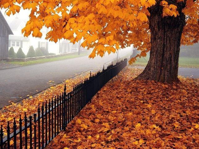 ... ministerio de fomento el otoño de 2015 comenzará el miércoles 23